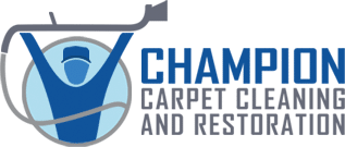 1 Carpet Cleaning Company Near West Palm Beach County