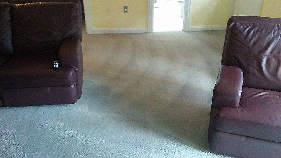 Top 5 Advantages of Hiring a Professional to Clean the Carpets