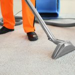 Go Green With Non-GMO Carpet Cleaning Services Near Northfield