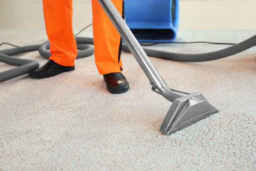carpet cleaning company near Northfield MN